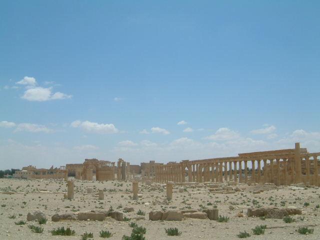 パルミラ遺跡 Palmyra (8)  完了編_c0011649_131242.jpg