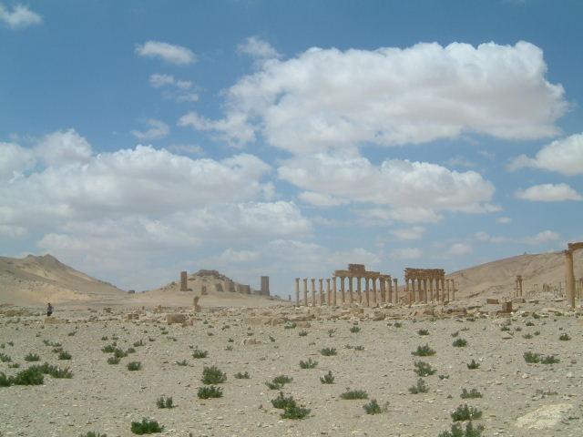 パルミラ遺跡 Palmyra (8)  完了編_c0011649_134094.jpg