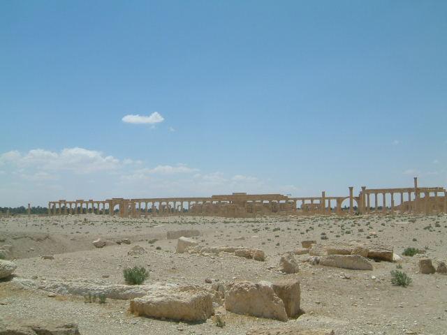 パルミラ遺跡 Palmyra (8)  完了編_c0011649_142648.jpg