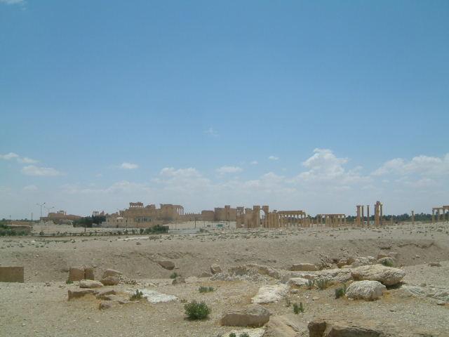 パルミラ遺跡 Palmyra (8)  完了編_c0011649_14299.jpg