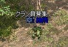 c0020960_13485978.jpg