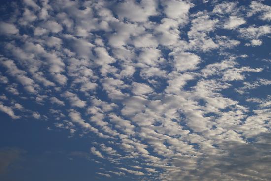 朝の雲_c0054876_6201270.jpg