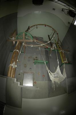 旭山の展示は凄い。_b0023856_6553455.jpg