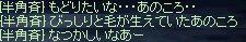 b0050075_2473436.jpg