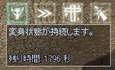 d0055501_1745121.jpg