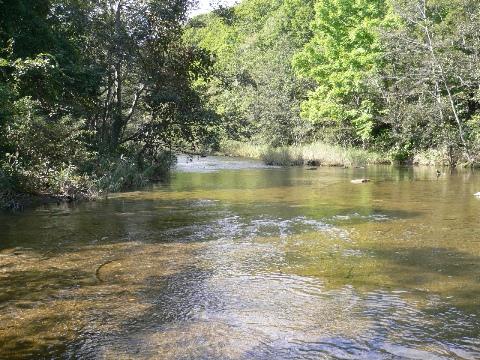 素敵な川を発見!_b0068572_20171247.jpg
