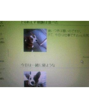 e0081284_13514960.jpg