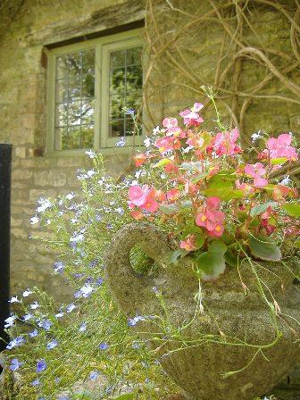 イギリスの田舎の村へ_d0000304_23245443.jpg
