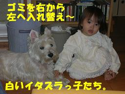 c0004744_13251543.jpg