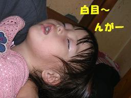 c0004744_13501416.jpg