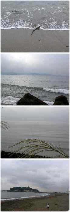 【誰もいない海】_b0009849_18435922.jpg