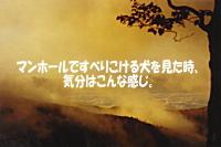 e0027529_1632116.jpg
