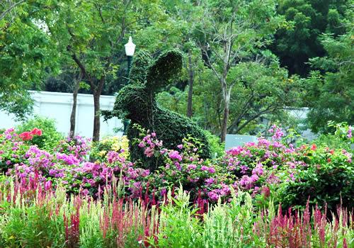 タイの植木職人_b0016049_23533038.jpg