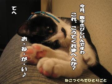b0041182_655658.jpg