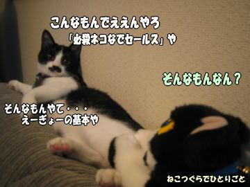 b0041182_763049.jpg