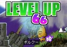 d0066398_199622.jpg