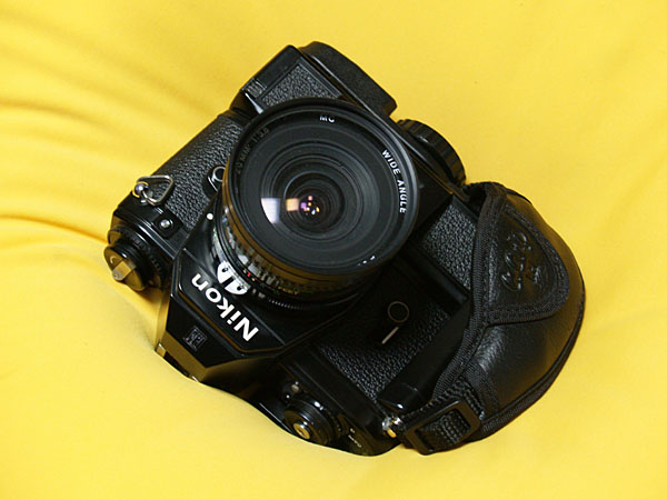 My Little Nikon_d0068664_2217852.jpg