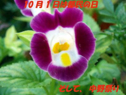b0060071_23365578.jpg