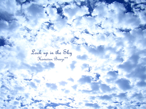 Look up in the Sky_c0013726_13305949.jpg