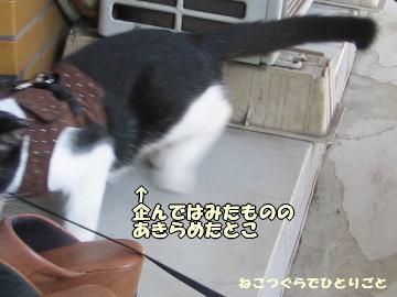 b0041182_0191050.jpg