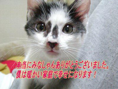 b0021297_21364043.jpg