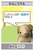 e0080406_11133474.jpg