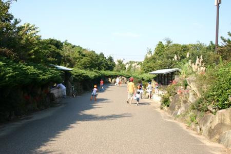 ■10/8~10は葛西臨海公園フェスティバル!_e0046474_16485855.jpg