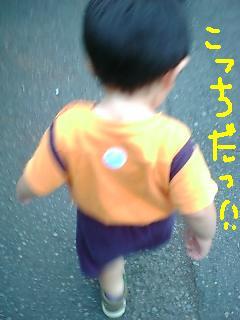 d0019402_1146611.jpg