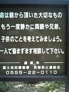 d0064541_246120.jpg