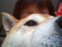 犬を飼う者の気持ち_c0049950_21581670.jpg