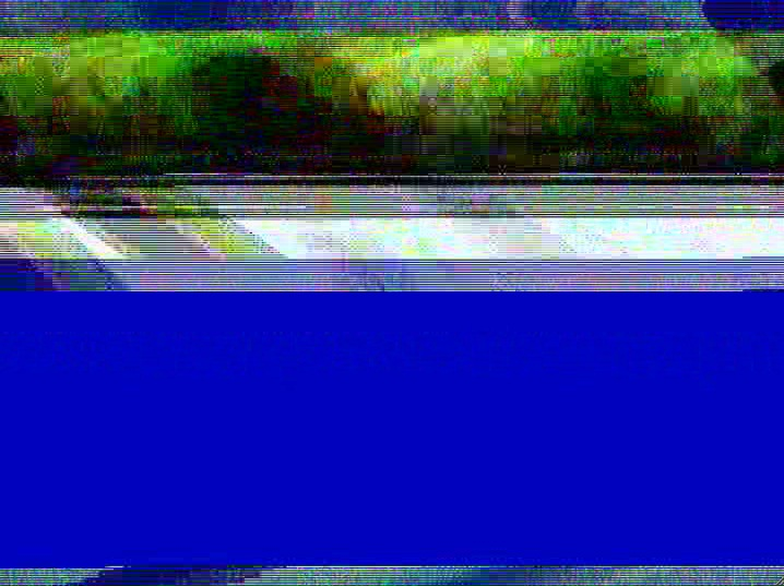 c0064553_093438.jpg