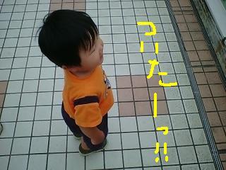 d0019402_18124365.jpg