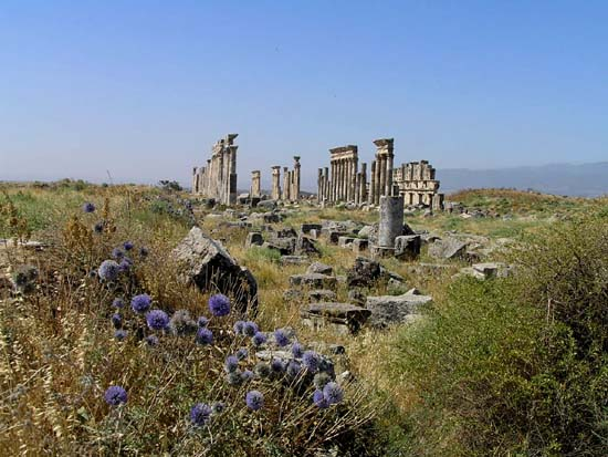シリア4 アパメア遺跡1_e0048413_22153427.jpg
