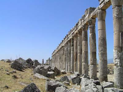 シリア5 アパメア2_e0048413_22294224.jpg
