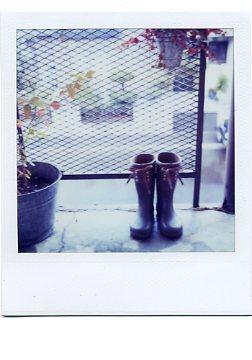 雨の日の偶然_e0059605_1712637.jpg