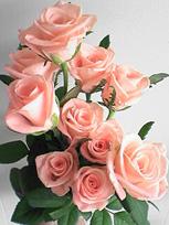 13日間キレイに咲いてくれましたっ_c0053520_19181112.jpg