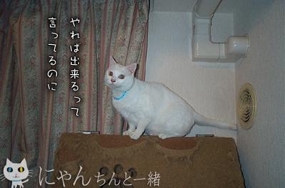 e0031853_00448.jpg