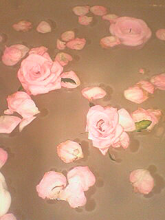 13日間キレイに咲いてくれましたっ_c0053520_1753548.jpg