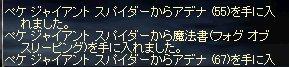 e0058448_1050015.jpg