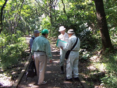 陣ヶ下渓谷公園樹木調査_c0007174_23495690.jpg