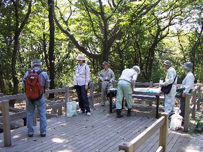 陣ヶ下渓谷公園樹木調査_c0007174_23503375.jpg