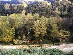 秋の半日ドライブ_d0028589_22241173.jpg