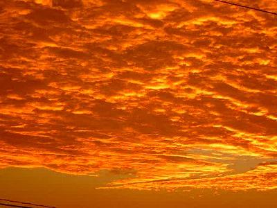 sunset*  _e0042839_10423179.jpg