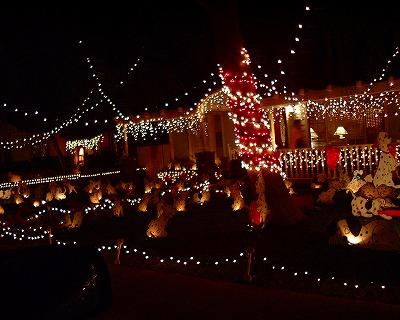Christmas*  _e0042839_11122966.jpg