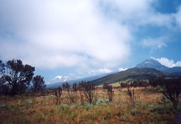 アルーシャ国立公園 ARUSHA (1)_c0011649_012289.jpg