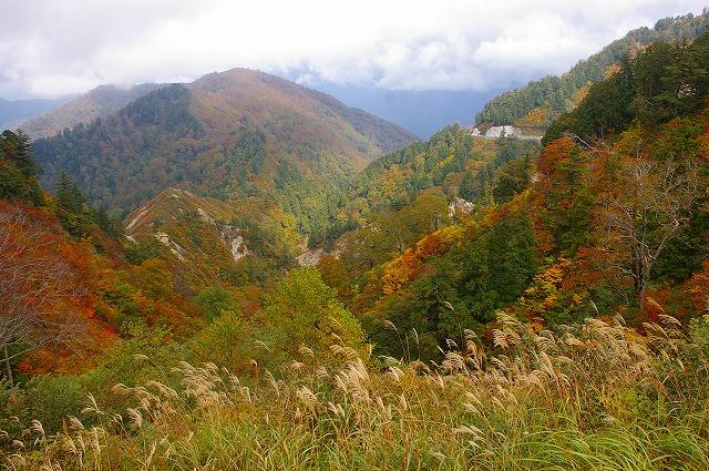 三方岩の紅葉~白山スーパー林道(1)_d0043136_21555967.jpg
