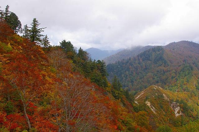三方岩の紅葉~白山スーパー林道(1)_d0043136_21571587.jpg