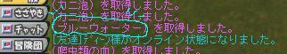b0037097_1451853.jpg