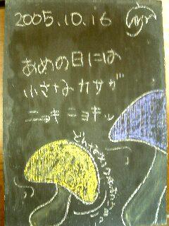 b0049307_912678.jpg