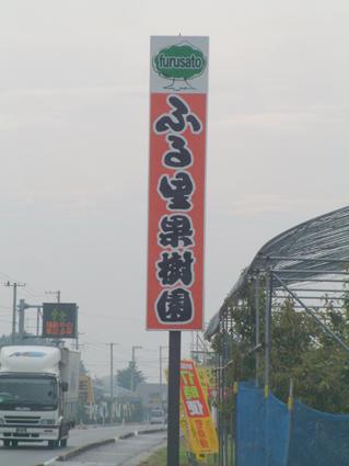 ぶどう狩り(ふる里果樹園)_e0075943_22313959.jpg